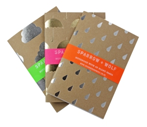 Weather notebooks (set of three) shop.tate.org.uk £12.50