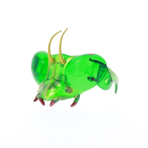 Bug goggles, £8.00, www.nhmshop.co.uk (green) copy